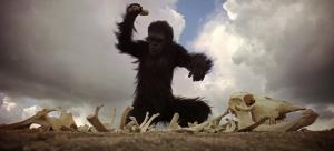 monos-2001-una-odisea-en-el-espacio